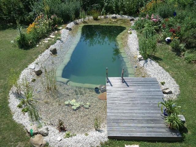 Schwimmteich Fotos, Schwimmteich Bilder, Gartenteich Bilder ...